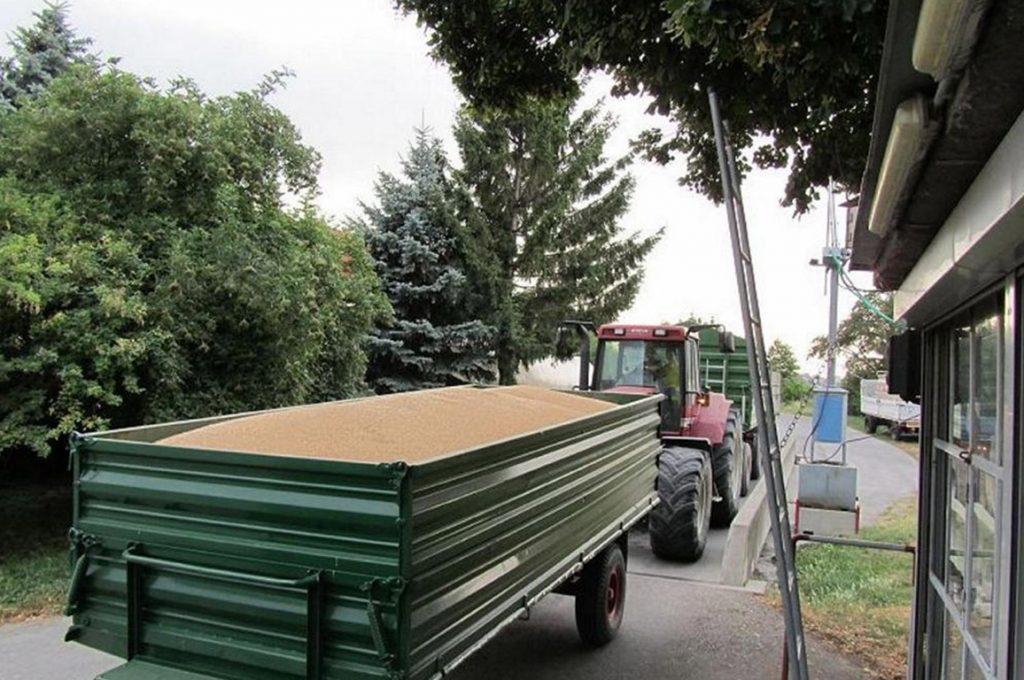 Traktor Weizenübernahme